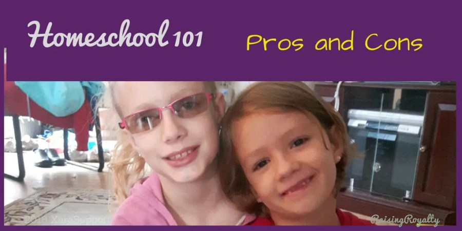 What are the homeschool pros and cons?