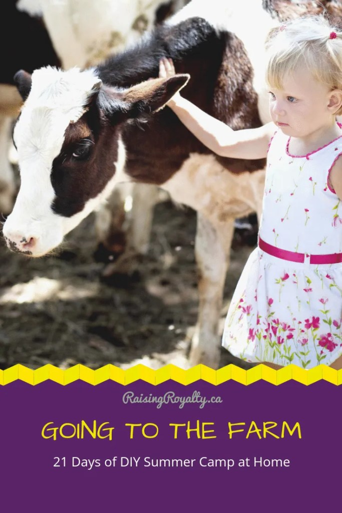For day 13, we're going to the farm at our DIY Summer Camp at Home.  Let's play with the farm animals, while we dance and learn more about farming.