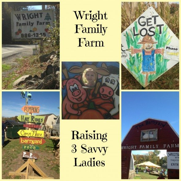 Wright Family Farm Warwick Collage