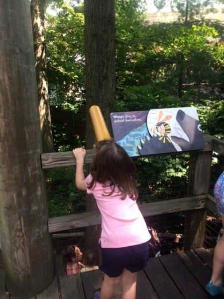 Slide Children's Zoo