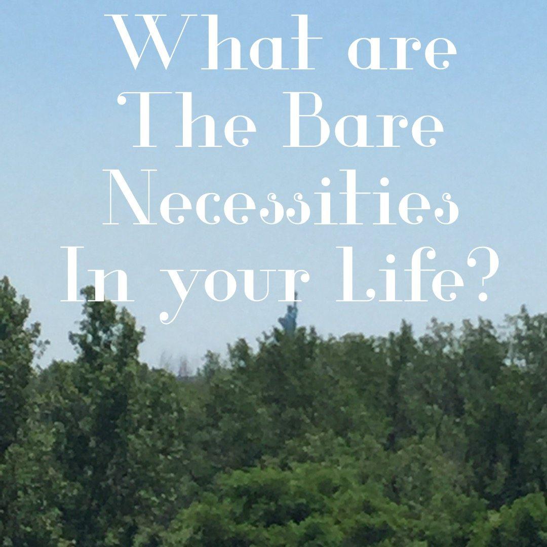 b585350382e What are the Bare Necessities in Your Life   PetesDragonEvent   JungleBookBluray