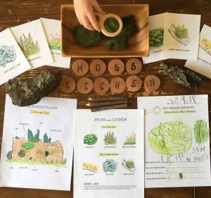 free nature study