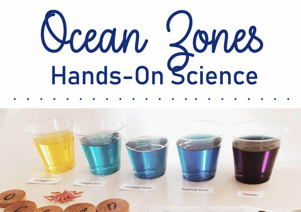 Ocean Zones Hands On Science Activity Raising Up Wild Things