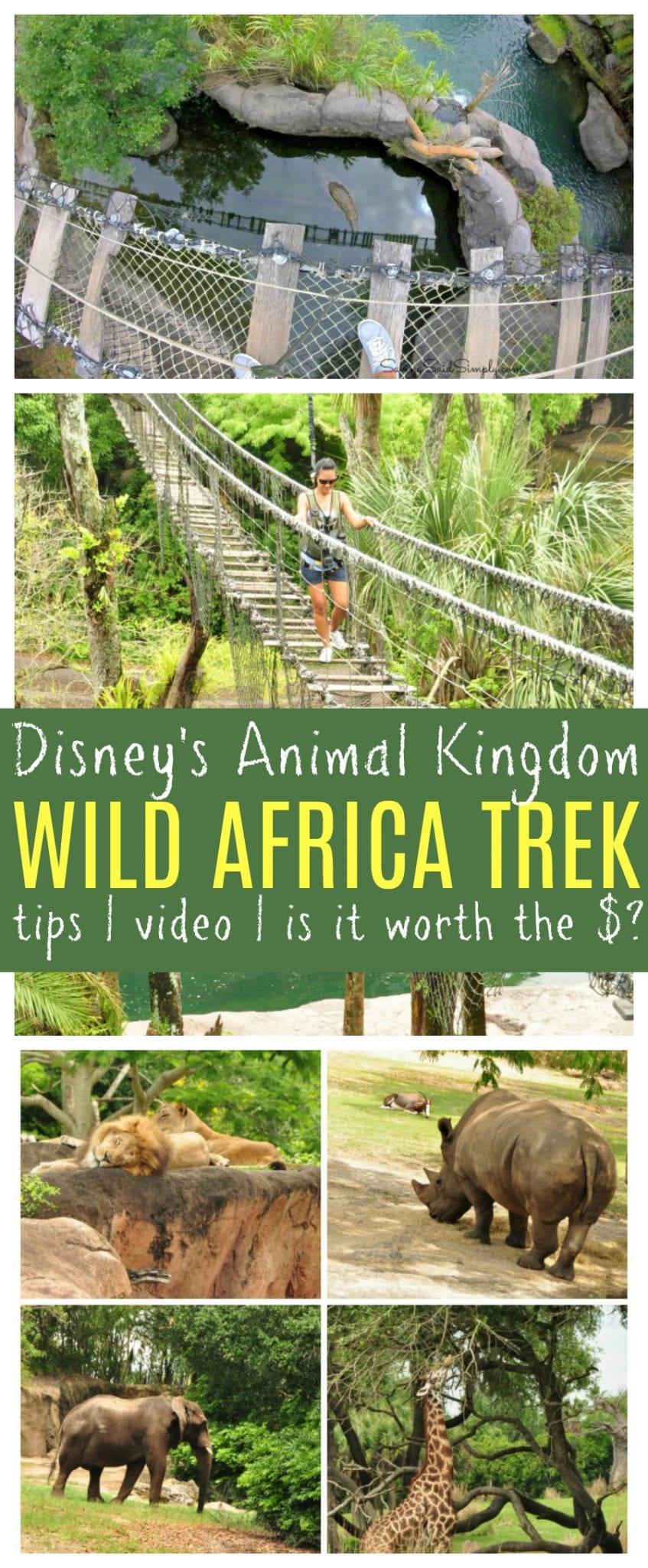 Disney wild Africa trek review pinterest