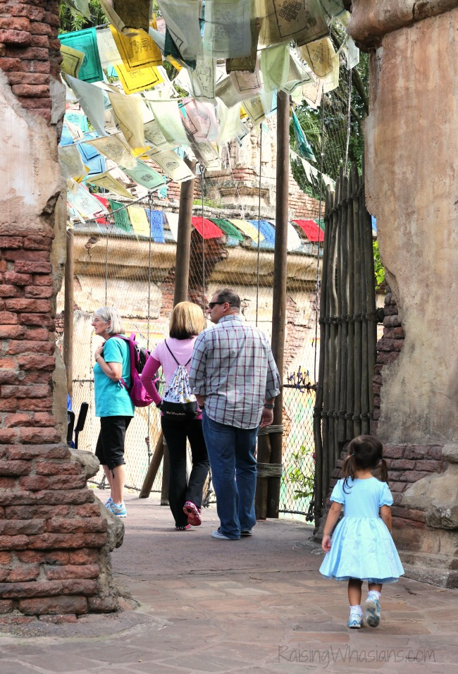 Disney animal kingdom for families