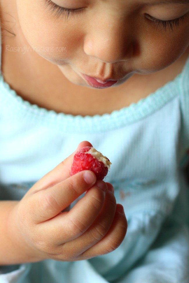 Frozen Key Lime Pie Raspberry Bites | Easy kid-friendly snack idea that's perfect for summer! Key lime pie meets raspberries in a bite sized frozen treat! #Dessert #Appetizer #Recipe