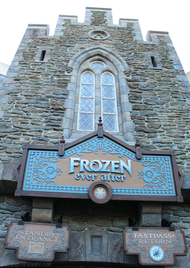 Frozen ever after tips