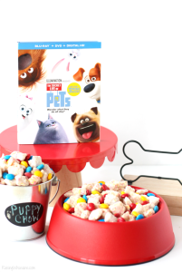 The Secret Life of Pets Party Ideas + Blu-Ray Combo Pack GIVEAWAY