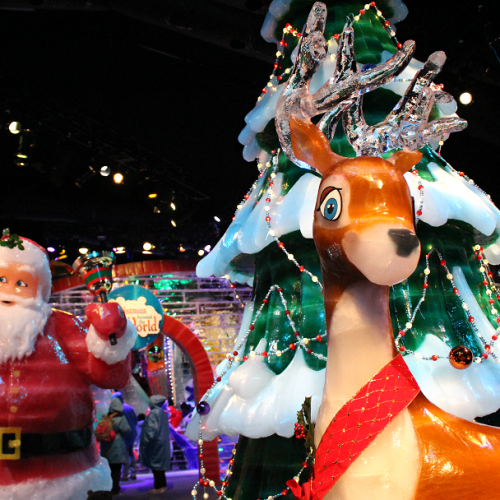 Best tips for visiting ice at gaylord palms