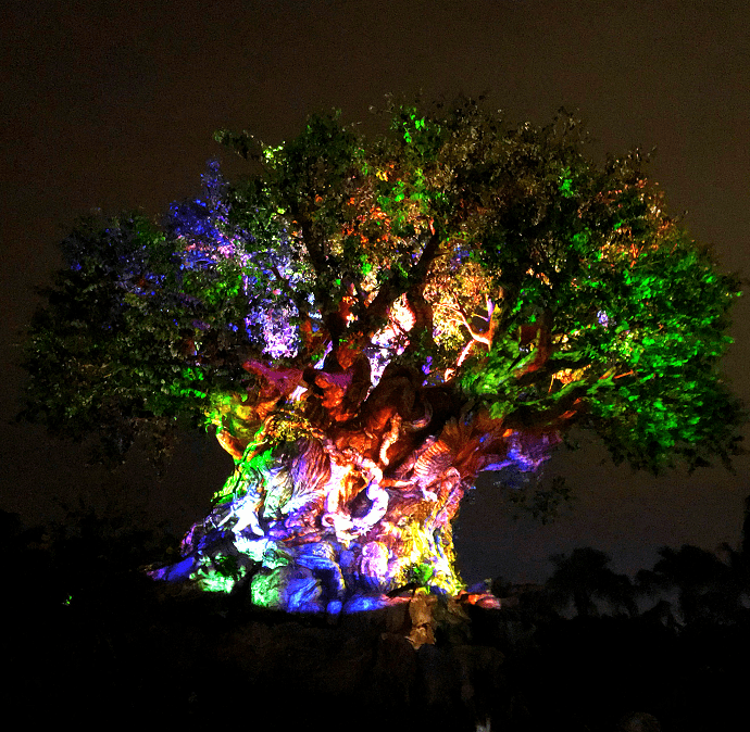 Disney After Hours at Animal Kingdom
