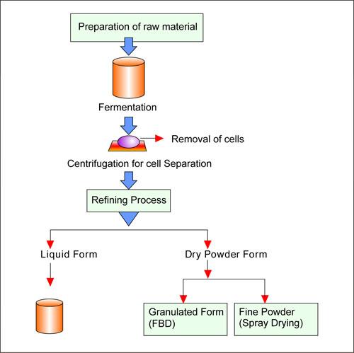 Biofuel Fermentation Process