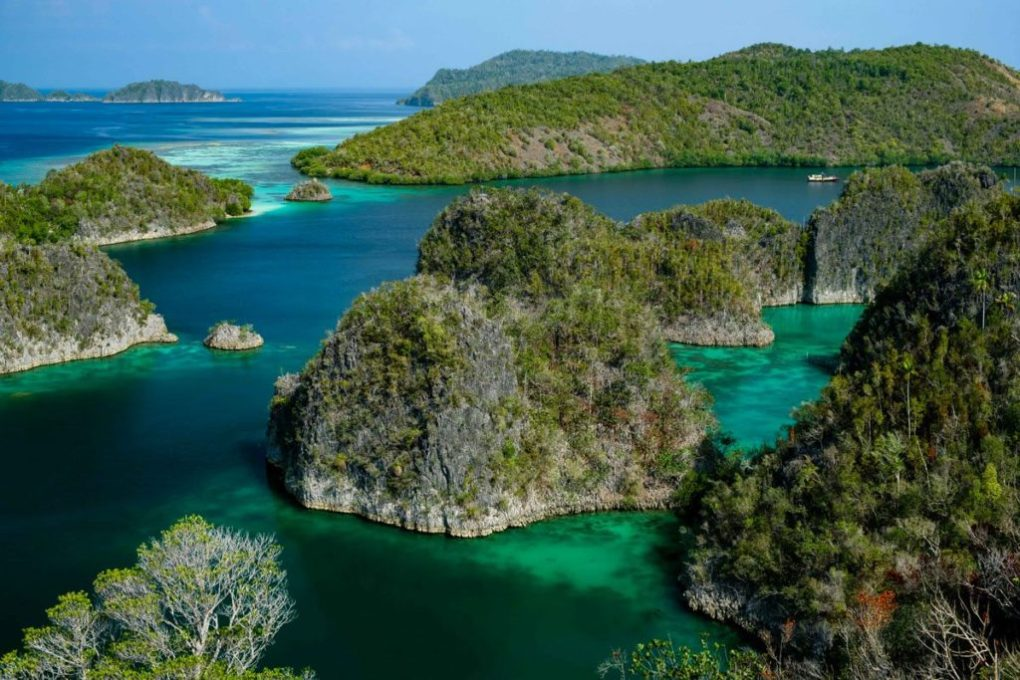 Raja Ampat Excursions - Fam Islands