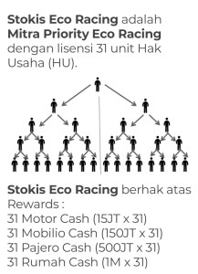 Stokis ECO RACING