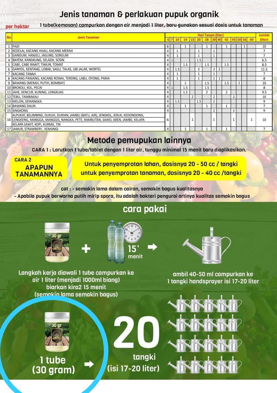 Perbandingan Menggunakan Pupuk Kimia dan Pupuk Eco Farming