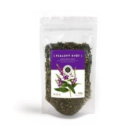 Fialový květ Inca Botanica