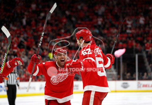 Feb 22, 2018; Detroit, MI, USA; Detroit Red Wings defenseman Jonathan Ericsson (52) celebrates with defenseman Trevor Daley (83) after scoring a goal during the second period against the Buffalo Sabres at Little Caesars Arena. Mandatory Credit: Raj Mehta-USA TODAY Sports