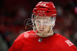 Mar 31, 2018; Detroit, MI, USA; Detroit Red Wings right wing Anthony Mantha (39) looks down during the third period against the Ottawa Senators at Little Caesars Arena. Mandatory Credit: Raj Mehta-USA TODAY Sports