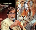 Big-B-Amitabh-Bachchan-to-become-Maharashtra-Tiger-Ambassador