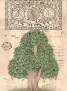 Mango Tree c003