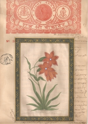 Mugal Flowers on old paper d017