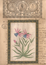 Mugal Flowers on old paper d020