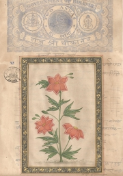 Mugal Flowers on old paper d025