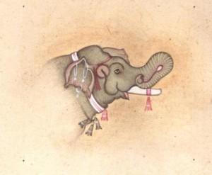 Elephant j008