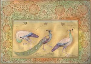 Bird k009