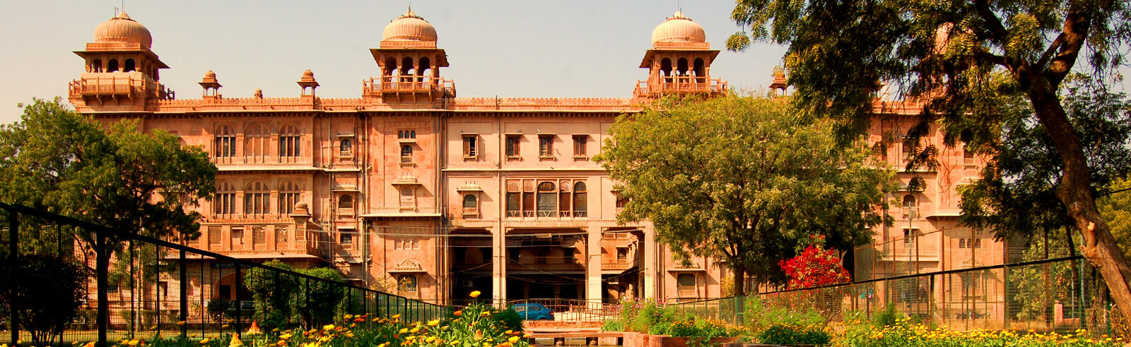Image result for COLLEGE OF VETERINARY AND ANIMAL SCIENCES  BIKANER