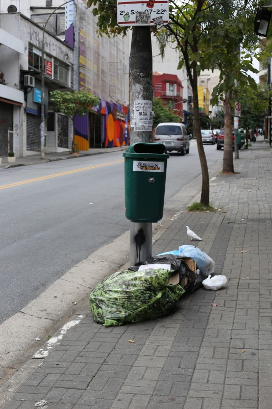 """In what must have been a rush to be """"green"""", most trashbags in Sao Paulo aren't black plastic, but plastic with this green leaf print. This amused me."""
