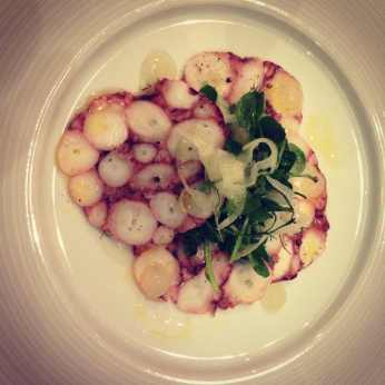 Pressed Octopus Salad