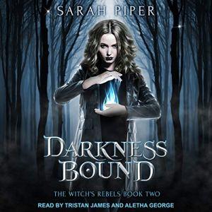 Darkness Bound: A Reverse Harem Paranormal Romance audiobook cover art