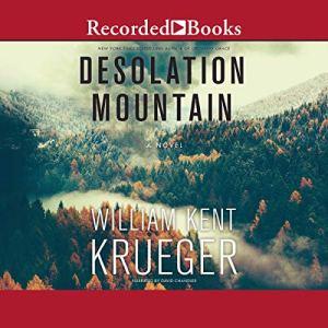 Desolation Mountain audiobook cover art
