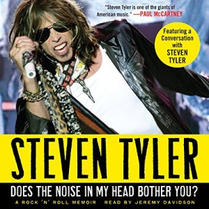 Does the Noise in My Head Bother You? audiobook cover art
