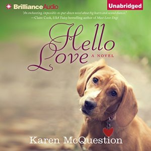 Hello Love audiobook cover art