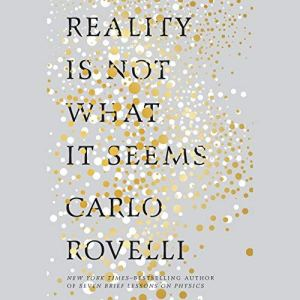 Reality Is Not What It Seems audiobook cover art