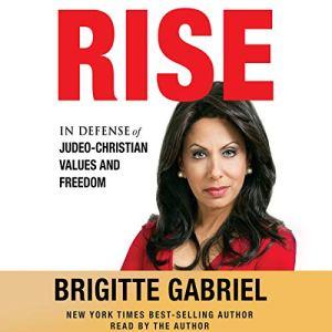 Rise audiobook cover art