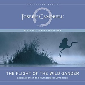 The Flight of the Wild Gander audiobook cover art