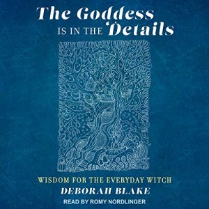 The Goddess Is in the Details audiobook cover art