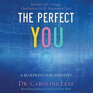 The Perfect You audiobook cover art