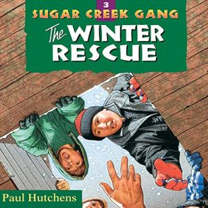 The Winter Rescue audiobook cover art