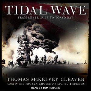 Tidal Wave audiobook cover art