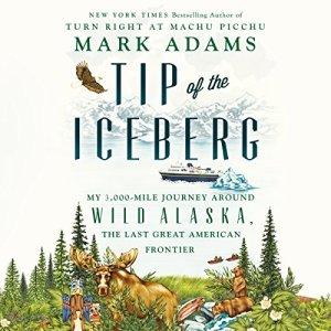 Tip of the Iceberg audiobook cover art