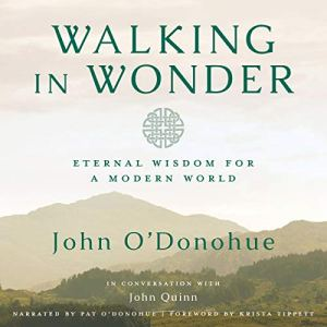 Walking in Wonder audiobook cover art