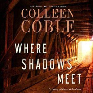 Where Shadows Meet audiobook cover art