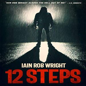 12 Steps audiobook cover art
