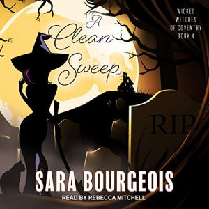 A Clean Sweep audiobook cover art