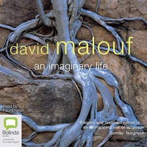An Imaginary Life audiobook cover art