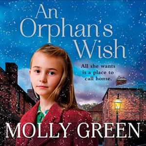 An Orphan's Wish audiobook cover art