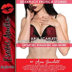 Aria Scarlett Brings You Twenty Hot Tales: Group Sex, Rough Sex, and More! audiobook cover art